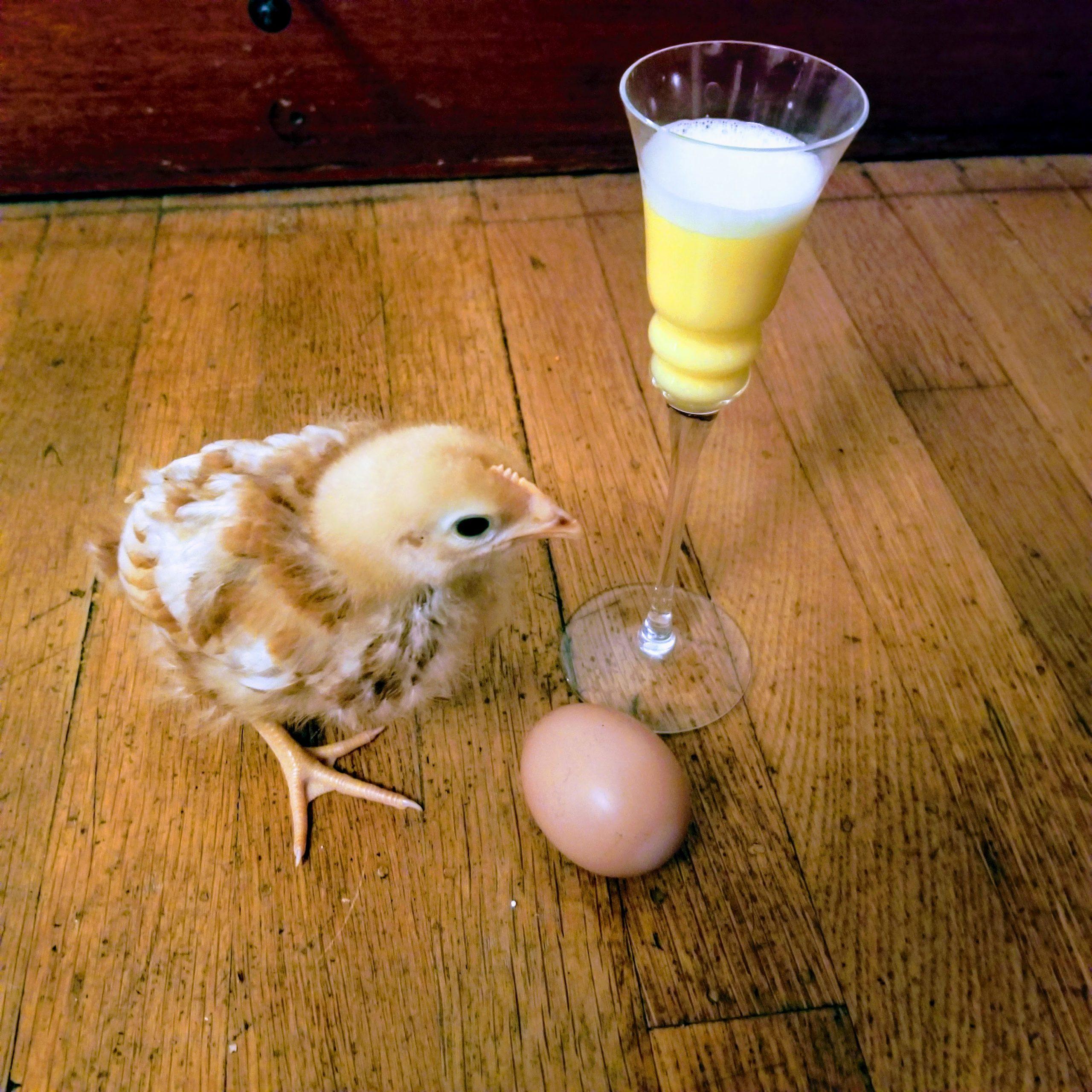 Ei, ei, Ei und Frohe Ostern!